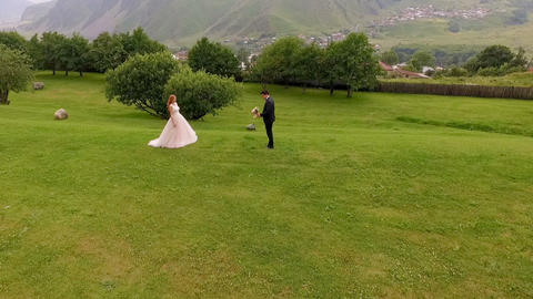 Beautiful and happy bride and groom along the green grass against the backdrop Footage