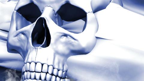 A model of human skull Animation