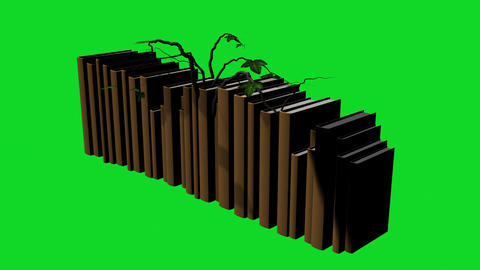 animation - Ivy growing over a books Animation