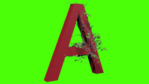 animation - Ivy growing over a letter, Stock Animation