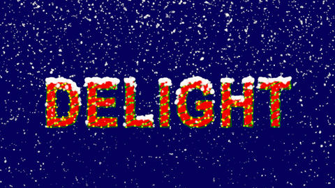 New Year text text DELIGHT. Snow falls. Christmas mood, looped video. Alpha Animation