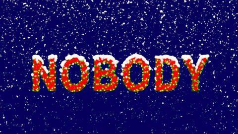 New Year text text NOBODY. Snow falls. Christmas mood, looped video. Alpha Animation