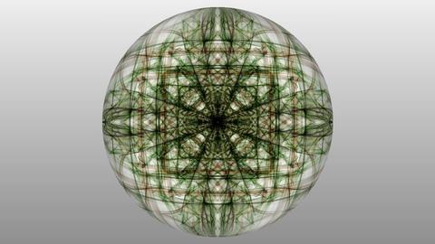 Dark green magic fractal patterns on white background. Symmetric live ornament Animation