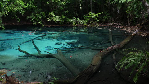 Emerald Pool large natural pool filled with pure natural hot spring water in Footage
