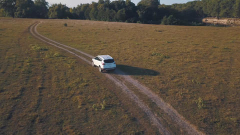 Aerial view on car driving through the road on a summer meadow Archivo