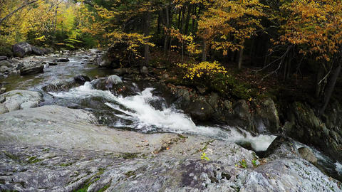 River In Fall stock footage