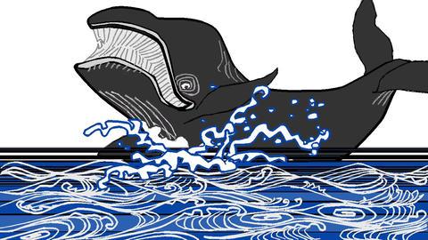 [alt video] Whale