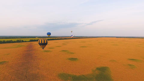 Air balloons flying over wheat fields, national amenities of nature, patriotism Live Action