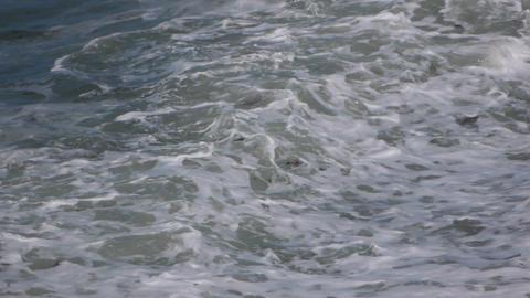 Wild sea shore Footage