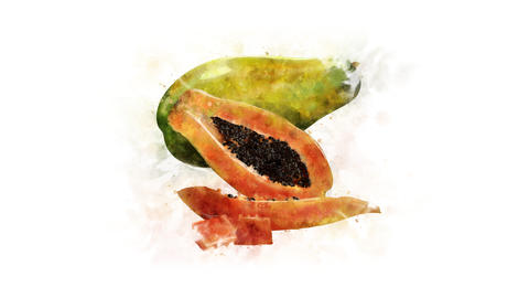 Papaya, animated illustration Animation