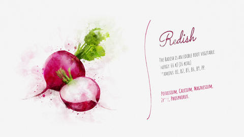 Information and description of Radish Animation