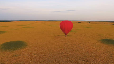 Hot air balloon floating low over golden field, enjoying solitude, distraction Footage