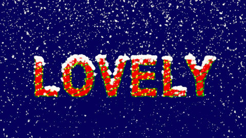 New Year text text LOVELY. Snow falls. Christmas mood, looped video. Alpha Animation