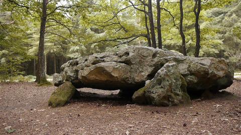 Dolmen La Grosse Pierre, megalithic capstone in Normandy, PAN Footage