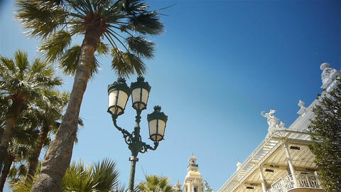 Waving palm trees and casino at Monaco, Cote D'Azur France Live Action