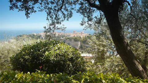 Princess Antoinette park and mediterranean sea at Monaco, Cote D'Azur France Live Action