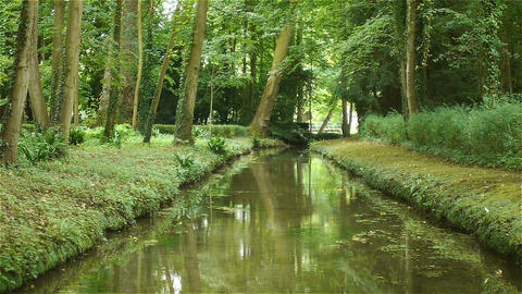 Little river at Canon Castle garden, France Footage
