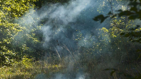 The smoke from the Fire 3 Footage