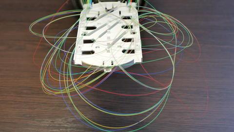 Optical tray with colored fibers Fotografía
