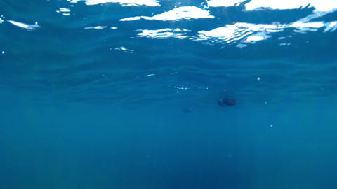 Slow motion underwater footage of life buoys in the sea at sunny day ビデオ