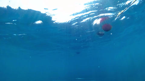 Slow motion underwater video of waving sea and life buoys at bright sunny day Live Action