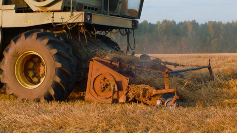 Combine harvester working on oat field in autumn in slow motion GIF