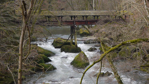 Wild water in natural park Eifel, Germany Stock Video Footage