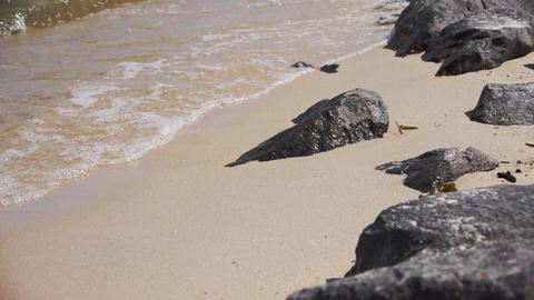 Sea shore and rocks Stock Video Footage