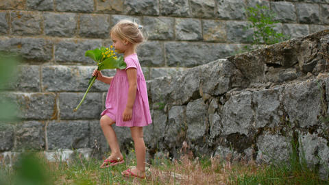 A girl in a pink dress with a bouquet of wild flowers Stock Video Footage