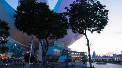 Art Science Museum Stock Video Footage