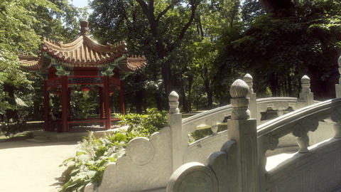 Chinese Garden Bridge Royal Baths Park Warsaw Live Action