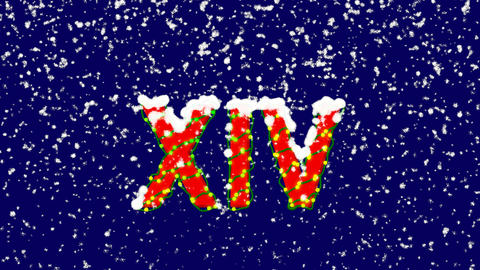 New Year text Roman numerals XIV. Snow falls. Christmas mood, looped video. Animation