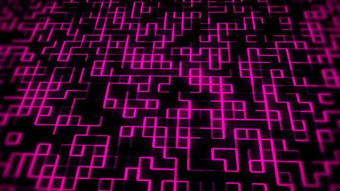 Fuchsia Glowing Digital Wall VJ Loop Motion Background Animation