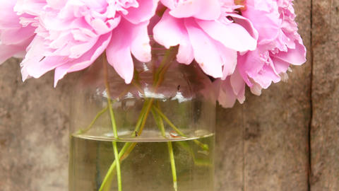 Flowers in a jug outdoors Footage