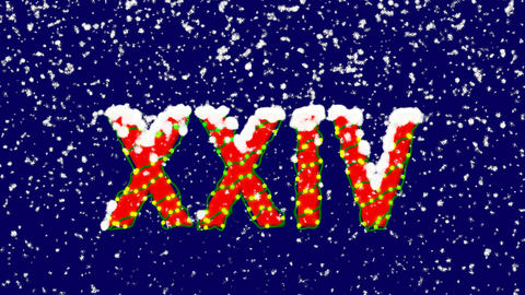 New Year text Roman numerals XXIV. Snow falls. Christmas mood, looped video. Animation