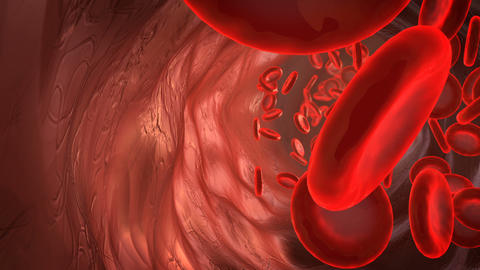 Blood particles in the artery Animation
