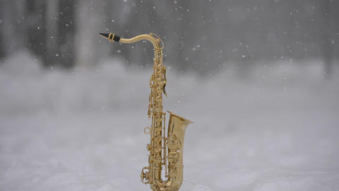 Many Snow and Crhistmas Saxophone ビデオ