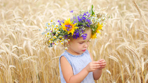 Caucasian girl in a field of flowers. A child in a field in the countryside Live Action