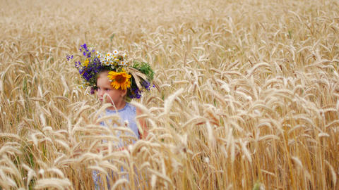 Caucasian girl in a field of flowers. A child in a field in the countryside Footage