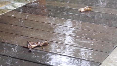 Slow motion downpour on wooden walkway in fall Footage