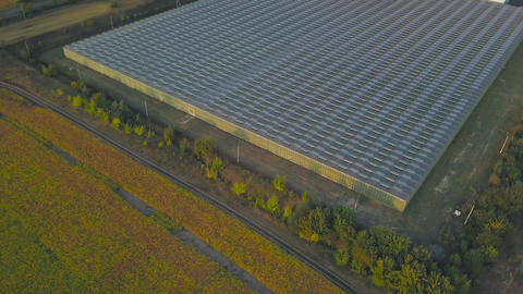View of the greenhouse. Organic cultivation of natural and fresh fruits and Footage