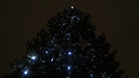 New year's tree Footage