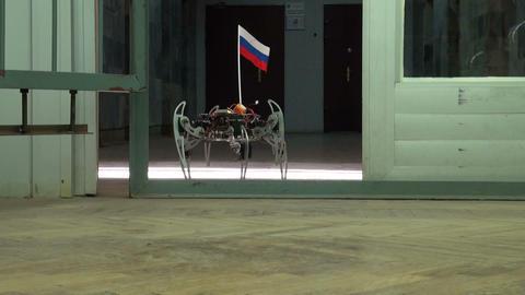 Spider robot Stock Video Footage