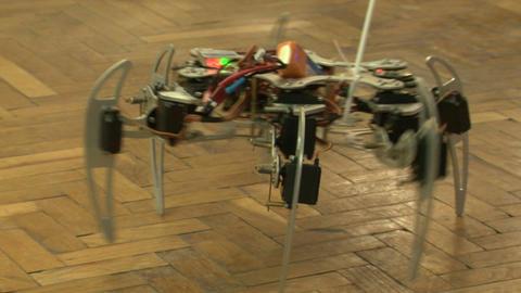 Spider robot Footage