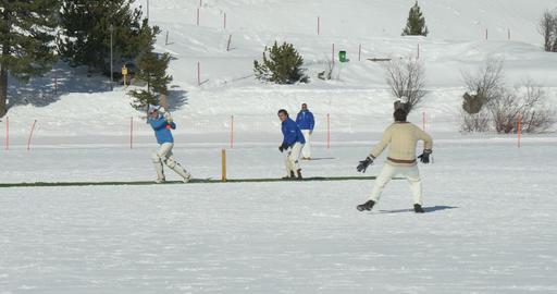 cricket on ice batting Footage