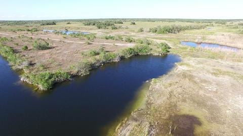 05 Everglades PAN 4K Footage