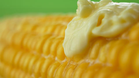 Tasty fresh piece of butter melting on ripe yellow fresh corn on cobs Live Action