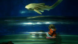 Little Girl and Leopard Shark Footage
