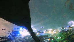 Sawfish Underbelly from an Aquarium Tunnel Footage