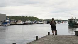 Man Fishing on Lake Pier Archivo